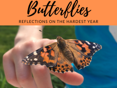 grief, faith, and butterflies